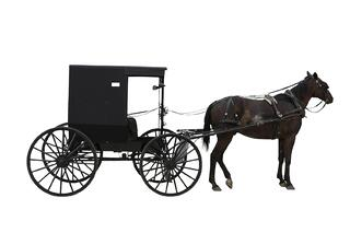 Horse and buggy for old fashioned brokers